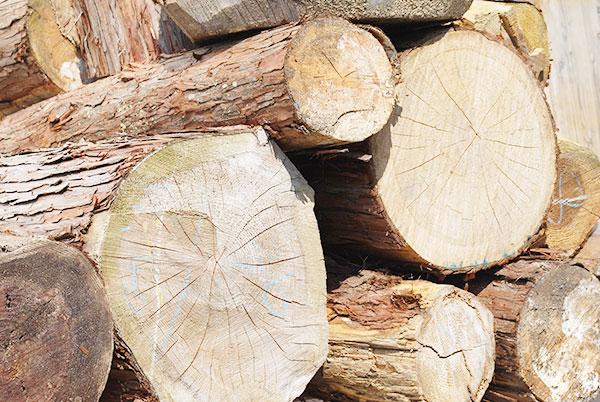 木の家具の特性について【ひのき家具専門店 ヒノキ・ワークス】
